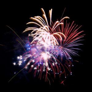 Bonfire night = firework fright for pets