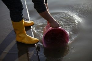 National Flood Risk Awareness Week: time to reflect on spending cuts