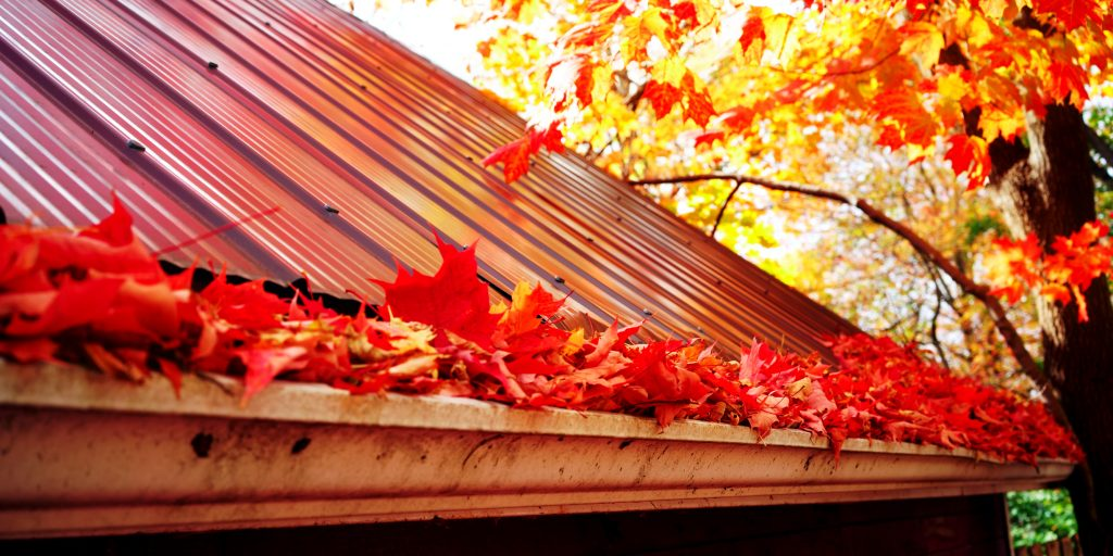 Keep your home maintained this Autumn